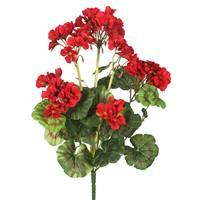 "20"" Red Geranium Bush"