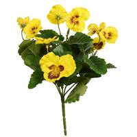 "10"" Yellow Pansy Bush 4/Pk"