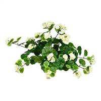 "16"" White Hanging Geranium Bush"