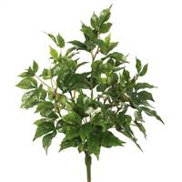 "20"" Maple Ivy Bush X 6 W/66 Lvs-Green"