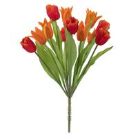 "12"" Orange Tulip Bush x 12"