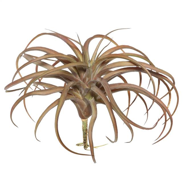 "10.5"" Red Tillandsia Pick"