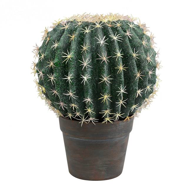 "9.5"" Green Cactus Ball in Gray/Red Pot"