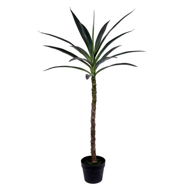 "44"" Green Potted Yucca Tree"