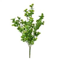 "18"" Green Boxwood Bush UV"