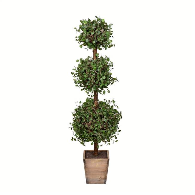 "40"" Potted Angel Vine Triple Ball"