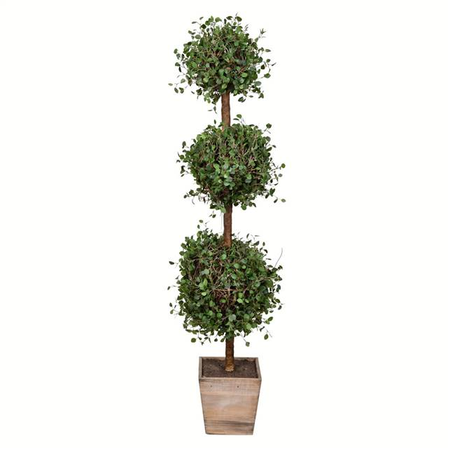 "48"" Potted Angel Vine Triple Ball"