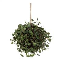 "6"" Angel Vine Ball"