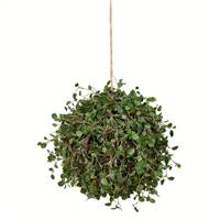 "10"" Angel Vine Ball"