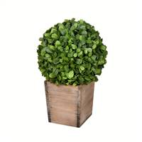 "16"" Potted Boxwood Ball"