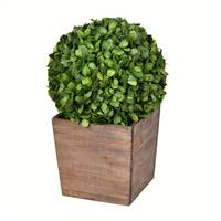 "21"" Potted Boxwood Ball"
