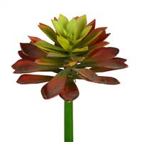 "10"" Red/Green Succulent Stem 2/Pk"