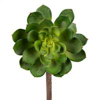 "6"" Green Succulent Stem 2/Pk"