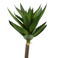 "14"" Green Succulent Stem 2/Pk"