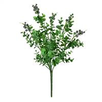 "14.5"" Purple/Green Money Leaf Bush Pk/2"