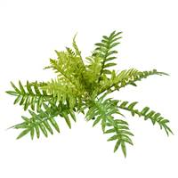 "26"" Green Fern Bush"