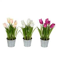 "10.5"" Asst Tulip in Metal Pot Set of 3"