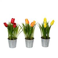 "9.5"" Asst Tulip in Metal Pot Set of 3"