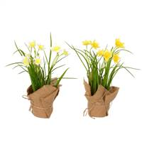 "10"" Yellow Daffodil Burlap Pot, Set of 2"