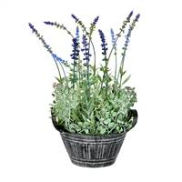 "14.5"" Lavender In Galvanized Pot"