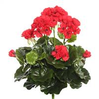 "15.25"" Red Geranium Bush"