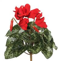 "11"" Red Cyclamen Bush"