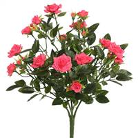 "15"" Hot Pink Mini Diamond Rose Bush"