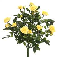 "15"" Yellow Mini Diamond Rose Bush"
