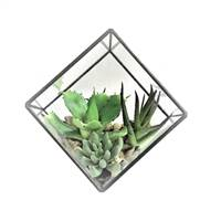 "5.5"" Green Succulents Diamond Terrarium"