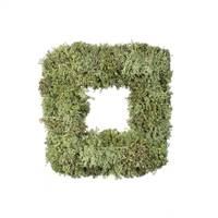 "15.5 "" Reindeer Moss Square-Dark Green"