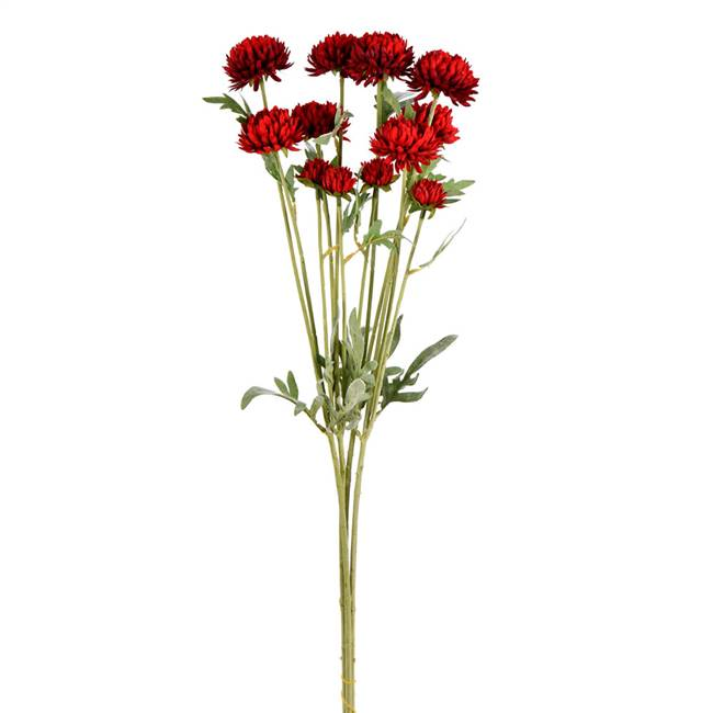 "27"" Red Daisy Spray Pk/4"