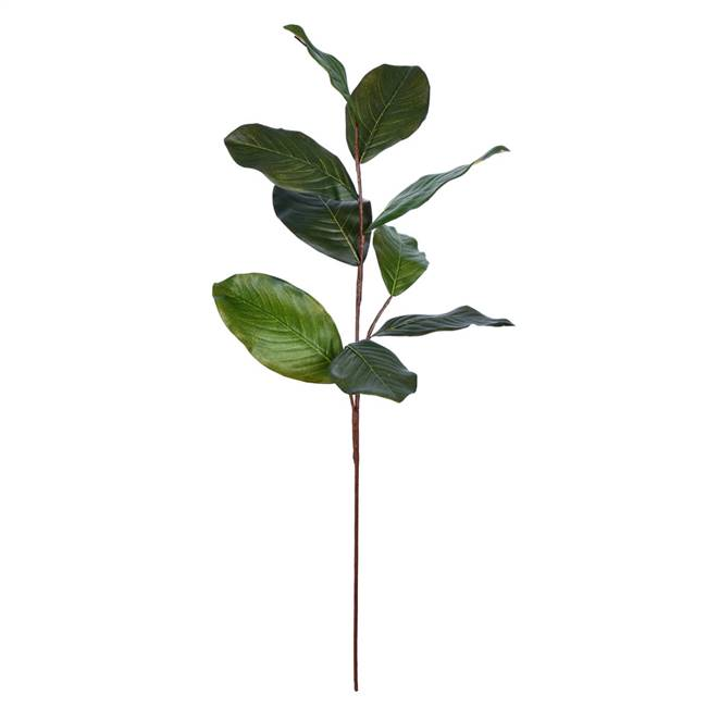 "30"" Green Magnolia Spray Pk/3"