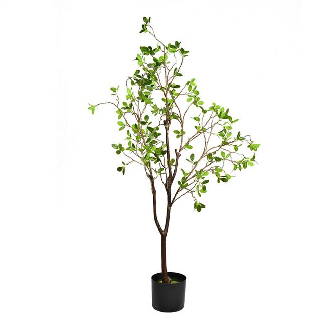 "48"" Potted Milan Leaf Tree"