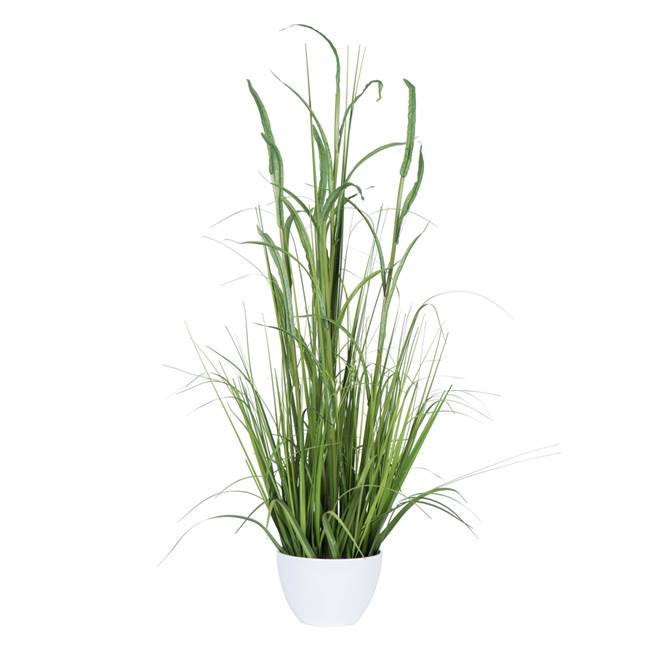 "41"" Green Potted Bamboo Grass"