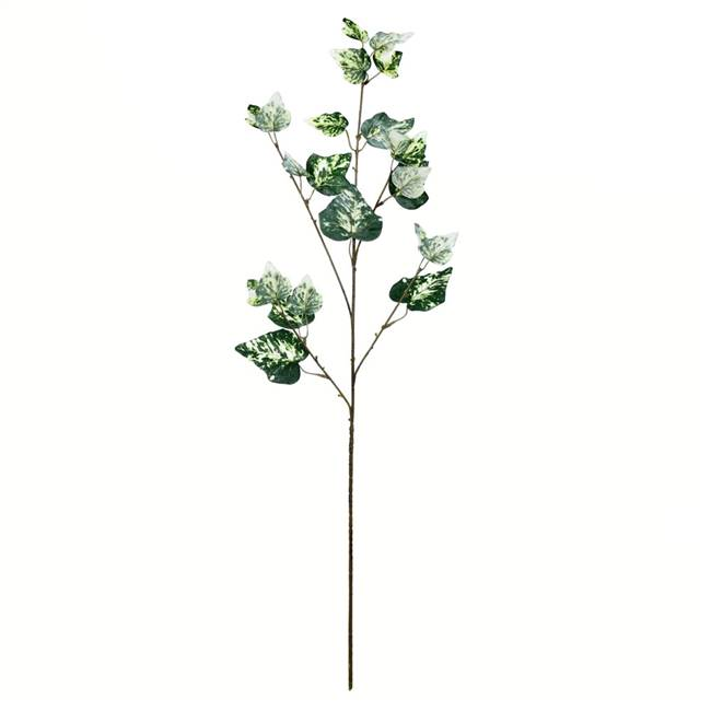 "32"" Green Variegated Ivy Spray 3/Pk"