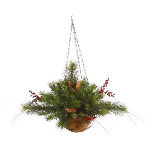 "12""x20"" Mixed Berry Cone Hang Basket 61T"