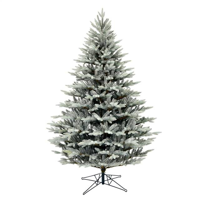 "10' x 74"" Douglas Blue Fir Tree 4524Tips"
