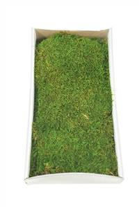 Green Moss Sheet - 8 oz./Tray