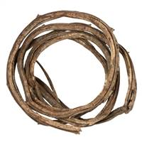 Thick Natural Coiled Vine - 1 pc