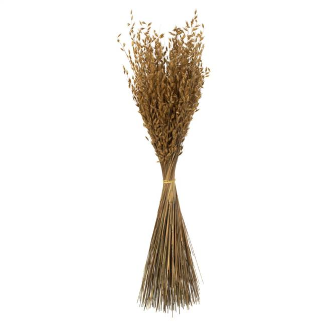 "30"" Natural Princess Grass - 7 oz."
