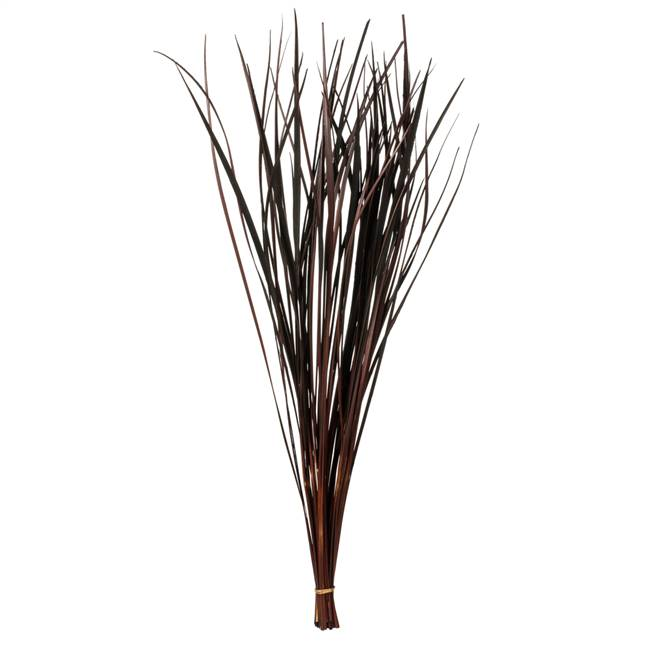 "28-36"" Brown Splinter Grass - 11 oz."