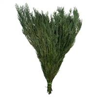 "18-24"" Green Premium Cedar Boughs"