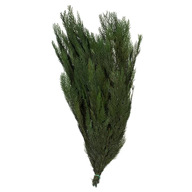 "30-34"" Green Premium Cedar Boughs"