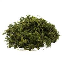 Oasis Green Fountain Vine - 4 oz/Bag