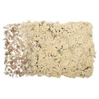 Natural Reindeer Moss - 8.8 lbs/Box