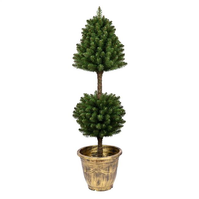 4' Potted Tifton Two Ball Topiary 303Tip