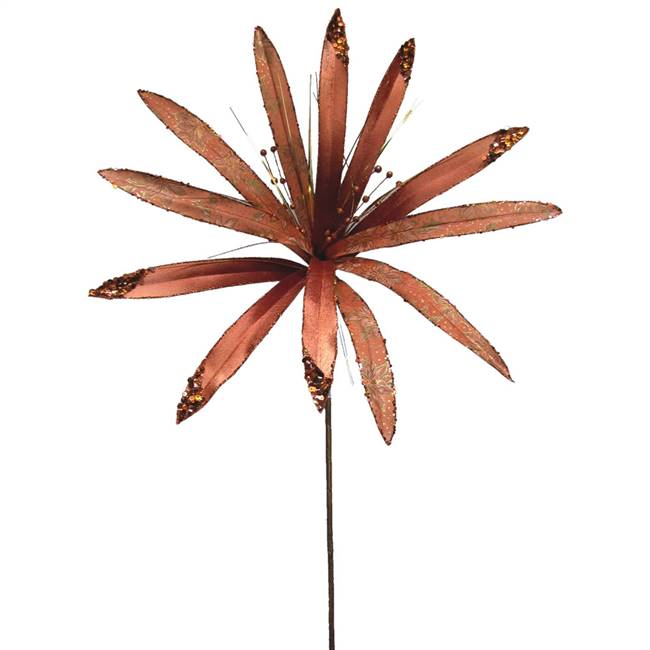 "36"" Chocolate Papyrus 17"" Flower"