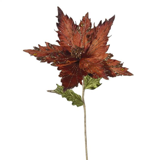 "26"" Chocolate Poinsettia, 13"" Flower 3/B"