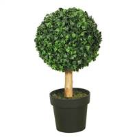"10"" Boxwood Topiary w/5"" Pot-7"" Ball"
