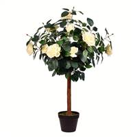 3' Potted White Rose Tree x14 Flowers